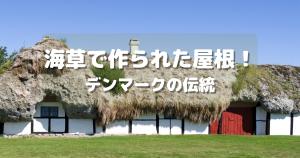 デンマークのレス島 海草葺き屋根